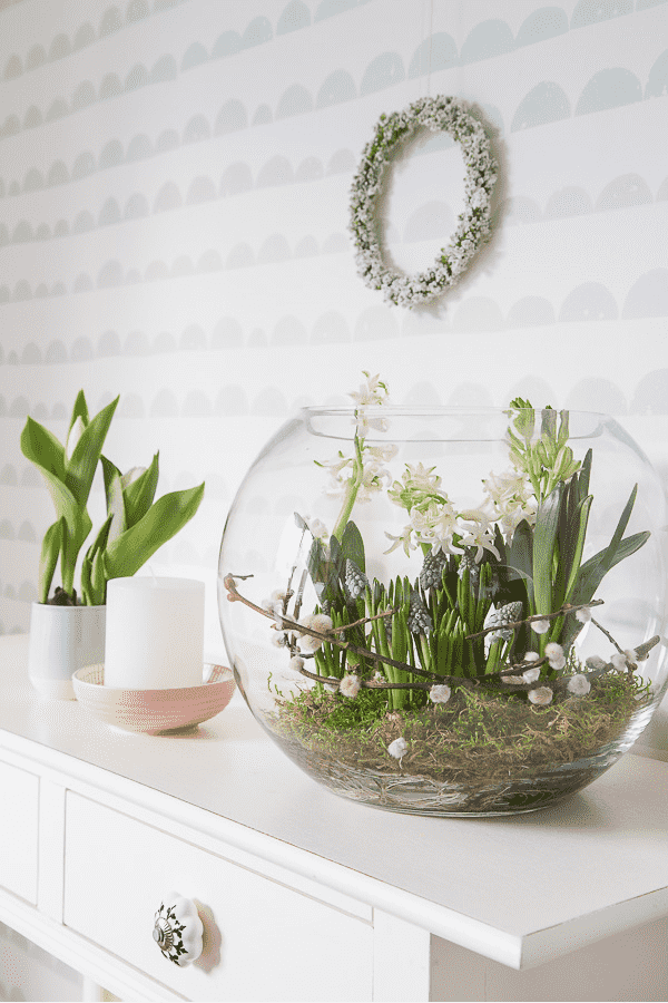 Easter activity terrarium with spring plants