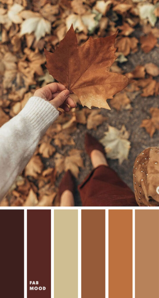 fall decor ideas: colour palette