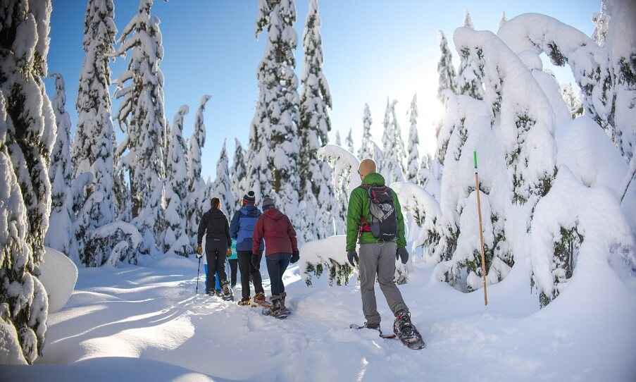 snowshoeing in North Vancouver